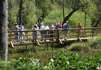 Hikers on a fall walk through Lake Conestee Nature Park's new boardwalks and trails © John Tynan